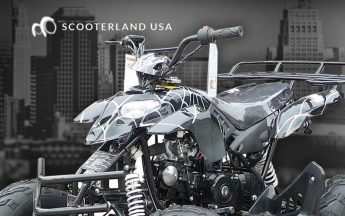 Scooterland USA Review   Book The Best Standard Scooters