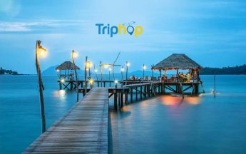 Triphop Review | Book The Best Hotels And Get Cashback