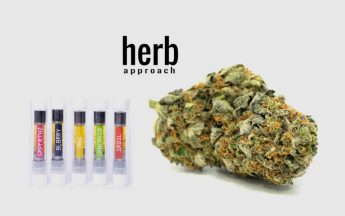 Herb Approach Review | Online Dispensary Canada Marijuana