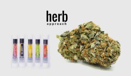 Herb Approach Review | Online Dispensary Canada Marijuana